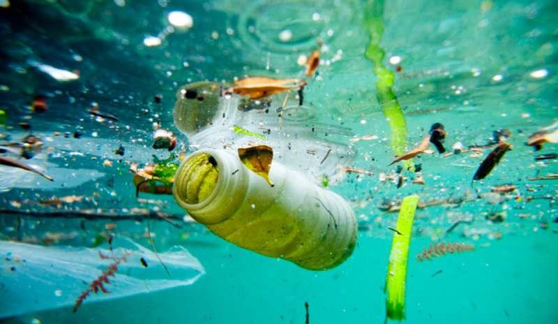 10 alternative plastic free ai più comuni oggetti monouso